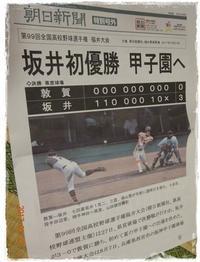 高校野球福井大会 - 田舎くらしっく