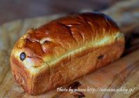 Le Petit Mec TOKYO 閉店前に買ったパン - 森の中でパンを楽しむ