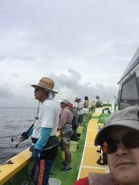 アジ釣り - (鳥撮)ハタ坊:PENTAX k-3、k-5で撮った写真を載せていきますので、ヨロシクですm(_ _)m