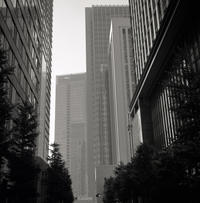 朝靄 - 心のカメラ / more tomorrow than today ...