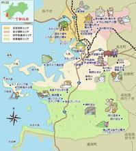 愛媛県宇和海のハマチ - クローバーのLife is cozy