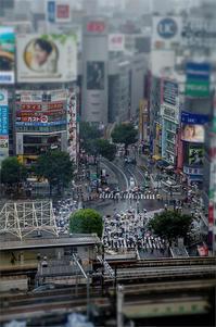 渋谷~ - tabatabata