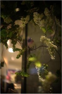 1846 大阪梅田(2017年6月15日キノプラズマート25㎜F1.5が天女の舞を)2-完- - レンズ千夜一夜