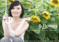 &Flowers:困っちゃうな♪雨のひまわり、困った長谷川さん - 東京女子フォトレッスンサロン『ラ・フォト自由が丘』-写真とフォントとデザインと-