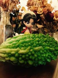 ゴーヤ初収穫 - 山田南平Blog