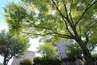 UR賃貸速報☆空き情報 - 福岡の良い住まい