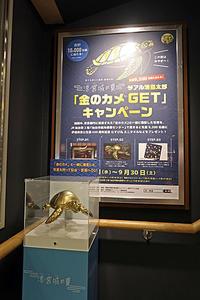 金のカメ TALK is LOFT 刊行記念パーティー - ムキンポの exblog.jp