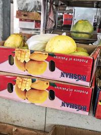 最近食べてみたフルーツ - 日日是好日 in Singapore