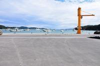 漁港と公園 - ひつじweblog