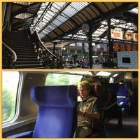 TGVの快適さとポール・ボキューズ中央市場 - やさしい光のなかで