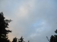ついに梅雨明け?       7月31日 - 雲居