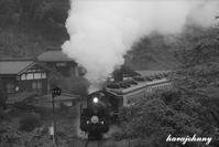 思い出~初めての磐越西線 - 蒸気をおいかけて・・・少年のように