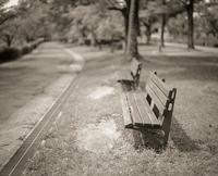 2017年8月3日 人待ち顔のベンチに近づく透明人間 - Silver Oblivion