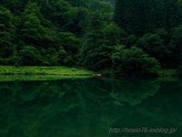 Deep green - デジタルで見ていた風景