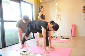 「戦士のポーズで踵がつかない!」のはなぜ? - ヨガ・ソレイヤード Yoga Souleiado with Michiko