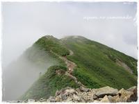 夏山~南アルプス・仙丈ケ岳へ♪ - azumiの夢まど