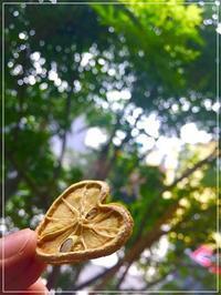 自分へのご褒美は「ハートの形のレモンティー」 - From sugar box studio