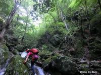 横瀬町 今夏の沢はじめは生川水系大持沢     Stream Climbing in Ōmochizawa, Yokoze, Saitama - やっぱり自然が好き