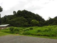 8月の始まり、夏本番! - 千葉県いすみ環境と文化のさとセンター