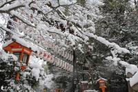 氷室な景色・八坂神社 - 浜千鳥写真館