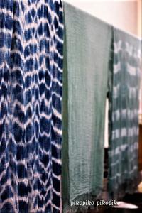 草木染 藍の生葉染めとインディゴ染め - 今が一番