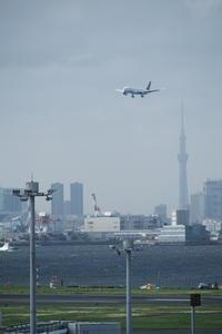 HND - 192 - fun time (飛行機と空)