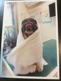 E.T.みたいだね - Nammys room ~4/You 2~