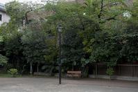 公園 - 社会人美大生の写真日記。