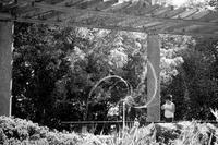夏休みの朝はキラキラの思い出 - Yoshi-A の写真の楽しみ