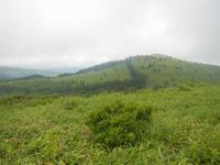 霧ヶ峰ハイキング~霧ヶ峰は霧の山だった~ その3 - ぷんとの業務日報2ndGear