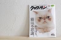 クロワッサン猫特集♪やっぱり猫は不思議・・・ウチの不思議猫 - きょうだい猫と仲良し暮らし