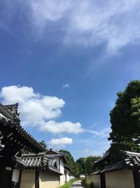 今朝の京都 - ★ Eau Claire ★ Dolce Vita ★