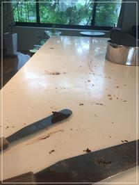 超~おすすめ♪ お家掃除にはあの!「除菌スプレー」がいい‼ - From sugar box studio
