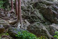 夕暮れに日和田山へ - デジカメ写真集