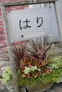 善し悪しは植物の選定で決まる - CHIROのお庭しごと
