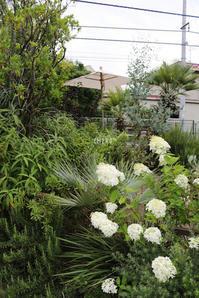3得 - CHIROのお庭しごと