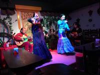Flamenco - 5W - www.fivew.jp