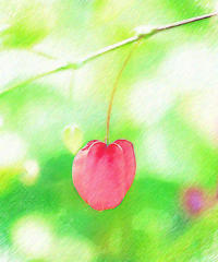 チロリアンランプ 3 - 光 塗人 の デジタル フォト グラフィック アート (DIGITAL PHOTOGRAPHIC ARTWORKS)