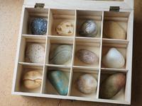 【海で拾った石】ドイツの箱の中の宇宙 - azukki的.