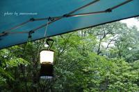 雨キャンプ - + anything goes +
