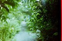 自然(じねん) - 雨のなまえ