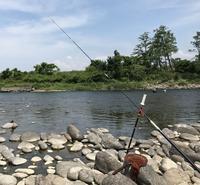 竿掛けステッキは必需品 - 鮎毛鉤釣りの旅