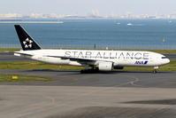 2機のANA スタアラ塗装機 - 南の島の飛行機日記