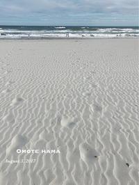 表浜海岸、荒れる - on the shore