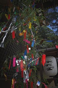 京の七夕 - 京都ときどき沖縄ところにより気まぐれ