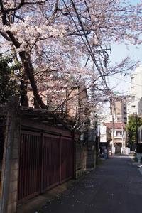 新宿坂道サンポ。1 - 新・光あるうちに行け!