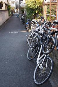 新宿坂道サンポ。5 - 新・光あるうちに行け!