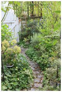 今年の夏、暑すぎますね~~^^; - natu     * 素敵なナチュラルガーデンから~*     福岡でガーデンデザイン、庭造り、外構工事をしてます