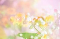 花束を(合成) - 僕の足跡