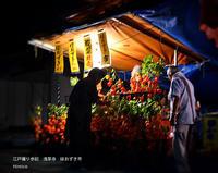 撮影「江戸撮り歩記」浅草寺 ほおずき市 - HIMICO - FINDER